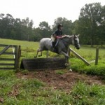 Gray horse pink cast jumping